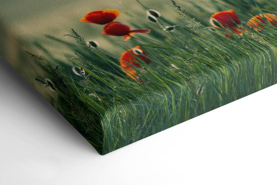 płótno canvas wizualizacja tekstury